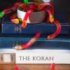 תולעת ספרים - על חנות קטנה ומטריפה ותולעים מלאות כבוד