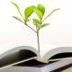 העץ הנדיב – הספר הראשון שלי
