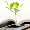 ספרים בחינם - הספרייה הגלובאלית